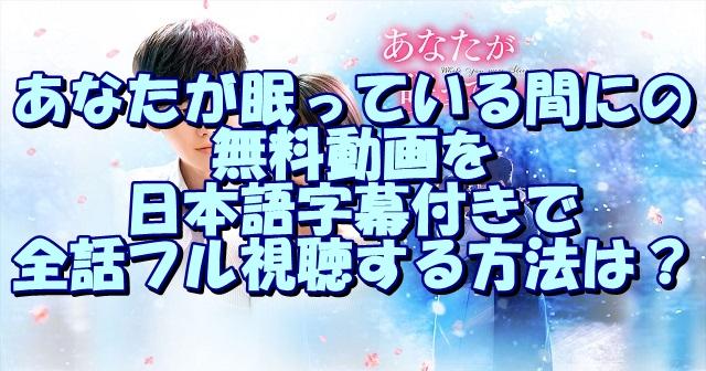 あなたが眠っている間にの無料動画を日本語字幕付きで全話フル視聴する方法は?