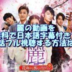麗の動画を無料で日本語字幕付きで全話フル視聴する方法は?